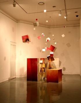 a fineapple. acrylic box. digital print. variable installation. 2007